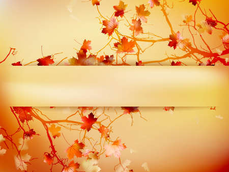 Autumn background with leaves Back to school. Vector