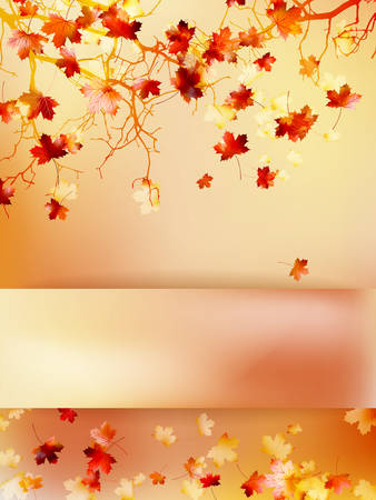 Autumn background with leaves Back to school. And also includes EPS 10 vector Vector