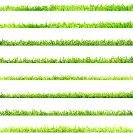 Artikel 8, klein Grass EPS-10 Standard-Bild - 30129050
