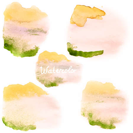 beidge: Watercolor art hand paint on white  EPS 10
