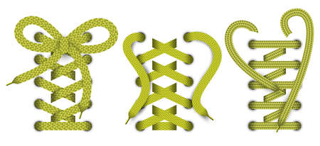 pulling rope: Set of color realistic lace object, elements for clothes or footwear. And also includes EPS 10 vector