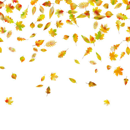 Falling autumn leaves in EPS 10 vector Фото со стока - 82579305