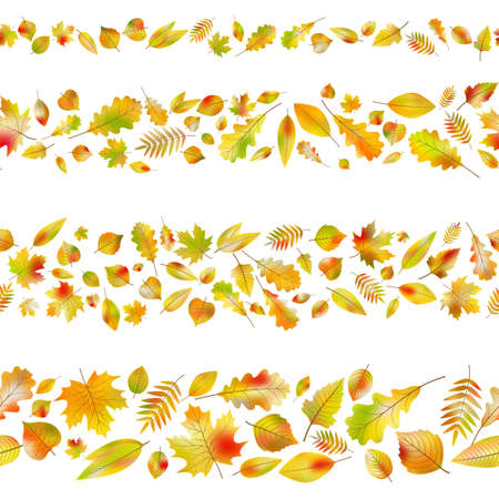 Set of seamless borders made from different autumn leaves isolated on white. And also includes EPS 10 vector Illustration