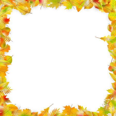 Autumn leaves frame isolated on white background. And also includes EPS 10 vector