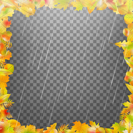 Frame composed of colorful autumn leaves. And also includes EPS 10 vector Illustration