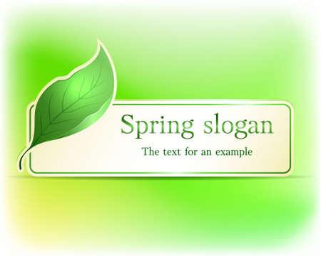 Spring banner Illustration