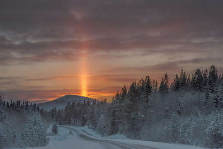 winterday: Sun pillar on a cold, cold winterday in Valaldalens nature reserve, Sweden