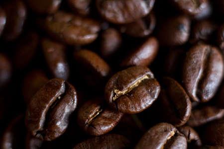 grains of coffee: Granos de caf� en un campo de granos cofee fotografiados con un objetivo macro.