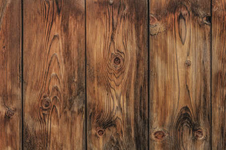 Old Pine wood fence planks with featured annual growth ring lines pattern, and knots  photo