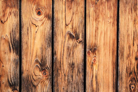 an old rustic Pine wood fence - detail  photo