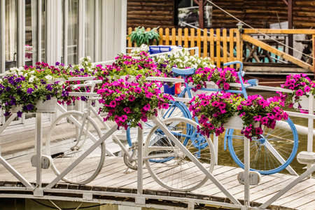 Photograph of white and blue painted bicycle set on white bridge, within the vivid flowery arrangement  photo