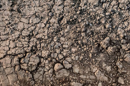 scorching: Photograph of desolate cracked soil with some blades of dry grass on barren surface, reduced by summer scorching heath to lumps of dried mud and dust