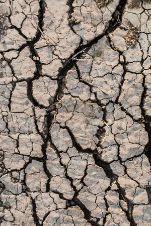 Photograph of desolate cracked soil with some blades of dry grass on barren surface, reduced by summer scorching heath to lumps of dried mud and dust  photo