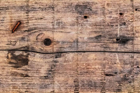 blotted: Old, weathered, rotten plank, with wood knots, lateral cracks, blots, stains, and embedded rusted crooked nail