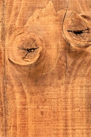 Old, rough textured, knotted, cracked, White Pine plank stained surface - detail  photo