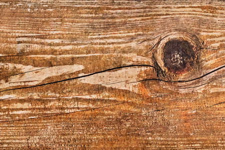 Old, knotted, rotten, cracked, painted, peeled-off plank - knot detail  photo