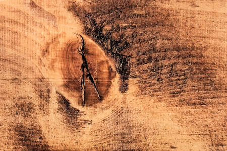 decomposition: Old, rough textured, knotted, weathered, rotten, cracked, plank - knot detail  Stock Photo