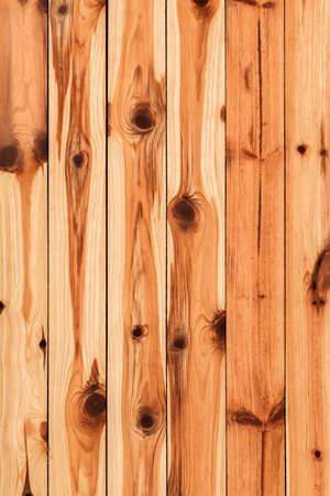 White Pine plank hut wall texture, with wood knots and joints  grooves - detail  photo