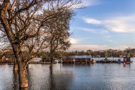 cielos azules: Fotograf�a temprana primavera dispar� al atardecer del elevado nivel de las aguas del r�o Sava, con casas flotantes a lo largo de sus riberas, �rboles sin hojas toldos y cielo azul con nubes blancas mullidas