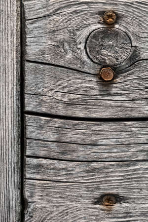 dilapidation: Old, weathered, rotten plank, with wood knot, lateral cracks and two rusty screws embedded  Stock Photo