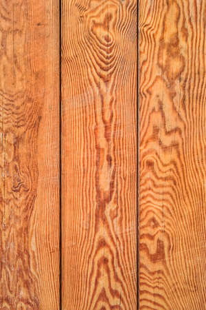 conspicuous: Photograph of bench seat, made of stained and varnished old weathered White pine planks, with conspicuous annual growth lines and dark wood knots  Stock Photo