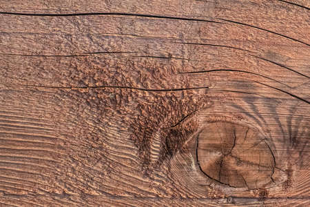 treated: Photograph of old, roughly treated, weathered, cracked floorboard, with large wood knot