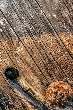 dilapidation: Old, weathered, rotten knotted planks, with drilled hole and rusty machine screw with rounded head