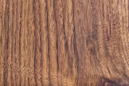 Walnut hardwood texture sample, with featured fine surface grain and annual growth lines photo