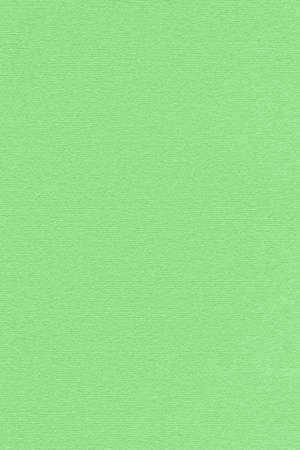 kelly: vivid bright Kelly green pastel paper texture sample