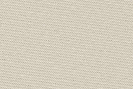 vellum: Photograph of coarse artificial leather off-white texture sample