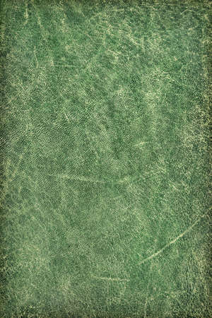 dilapidation: Photograph of old, weathered, rough, creased, coarse grained, crumpled, exfoliated green cowhide vignette texture sample