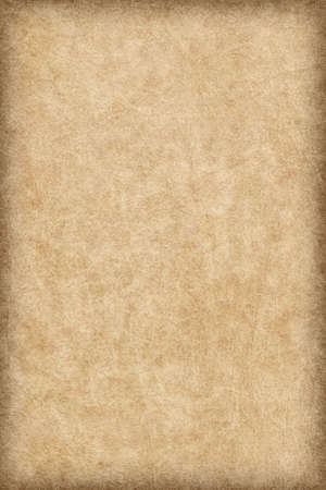 vellum: Photograph of old, animal skin parchment, coarse grained, vignette, grunge texture sample