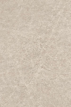 vellum: Photograph of old, animal skin parchment, coarse grained, grunge texture sample