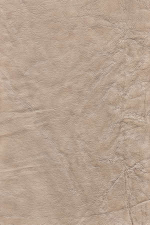 decomposition: Photograph of old, weathered, rough, creased, coarse grained, exfoliated Beige leather grunge texture sample