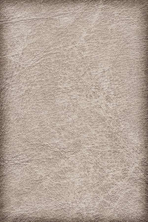 decomposition: Photograph of old, weathered, rough, creased, coarse grained, exfoliated Beige leather, vignette grunge texture sample