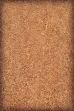 decomposition: Photograph of old, weathered, rough, creased, coarse grained, exfoliated Brown leather, vignette grunge texture sample