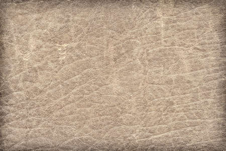 decomposition: Photograph of old, weathered, rough, creased, coarse grained, exfoliated Greyish Brown leather, vignette grunge texture sample Stock Photo
