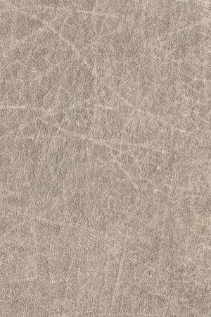 grigiastro: Fotografia di vecchio, alterato, ruvido, sgualcita, a grana grossa, espansa Grigi pelle marrone campione grunge texture