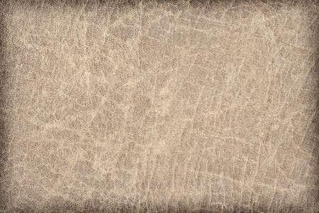 grigiastro: Fotografia di vecchio, alterato, ruvido, sgualcita, a grana grossa, espansa in pelle grigio-marrone, campione vignetta grunge texture