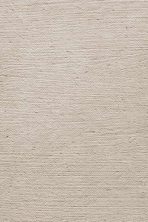 treated: Photograph of primed artist s Linen duck coarse grain canvas, roughly treated, crumpled Off White grunge texture sample Stock Photo