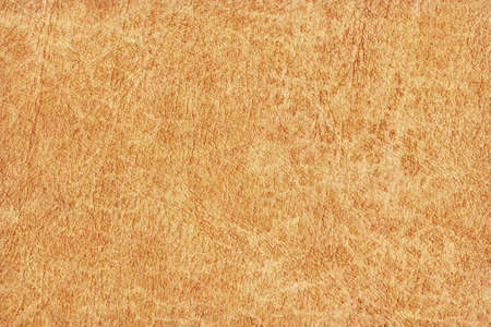 Photograph of an old animal skin parchment, creased, coarse grained, light Yellow Ocher grunge texture sample Stock Photo