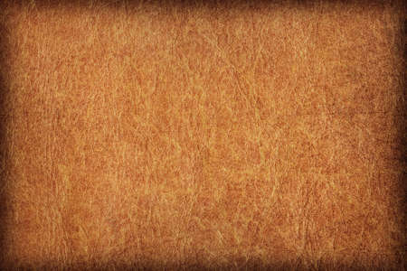 animal texture: Photograph of old, weathered, rough, creased, coarse grained, exfoliated Brown leather, vignette grunge texture sample.