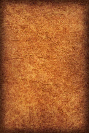 dilapidation: Photograph of old, weathered, rough, creased, coarse grained, exfoliated Brown leather, vignette grunge texture sample.