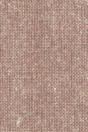 acrylic fiber: Photograph of light Brown Acrylic-Polyethylene upholstery and drapery fabric, with woven decorative mesh pattern ? detail.