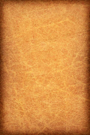 mottled skin: Photograph of an old animal skin parchment, creased, coarse grained, mottled, Red Ocher, vignette grunge texture sample Stock Photo