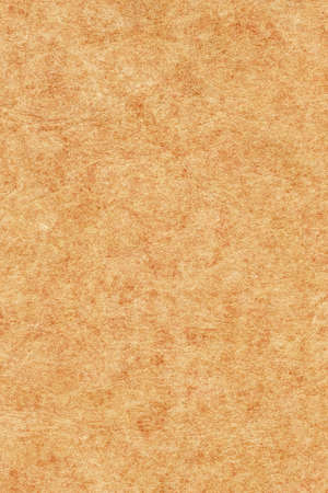 mottled skin: Photograph of an old animal skin parchment, creased, coarse grained, mottled, light Yellow Ocher grunge texture sample