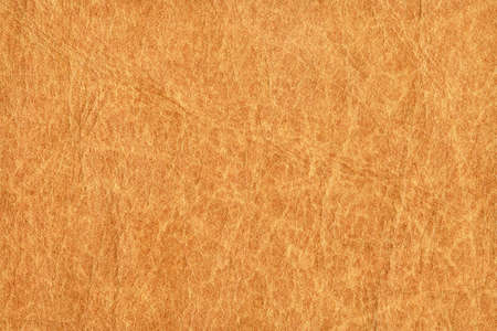 mottled skin: Photograph of an old animal skin parchment, creased, coarse grained, mottled, Yellow Ocher grunge texture sample
