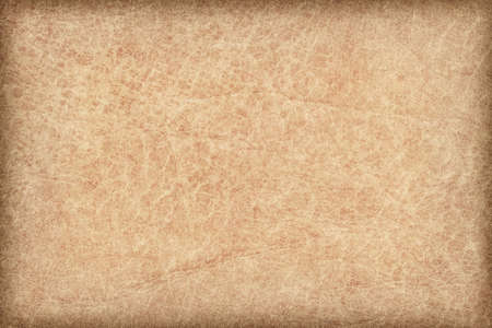 mottled skin: Photograph of an old animal skin parchment, creased, coarse grained, mottled, pale Yellow Ocher, vignette grunge texture sample Stock Photo