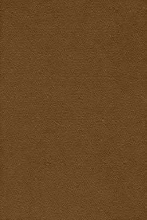 umber: Photograph of Raw Umber Brown Striped Pastel Paper, coarse grain, grunge texture sample.