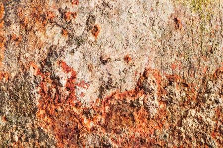 decomposed: Viejo,, placa de metal muy corro�dos obsoleto, cubierto con capas agrietadas, descompuestos de la pintura, grandes manchas de herrumbre profunda, y trazas de musgo seco, l�quenes y el crecimiento de algas. Foto de archivo